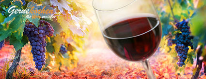 Fachartikel: Was versteht man unter Weinkörper?