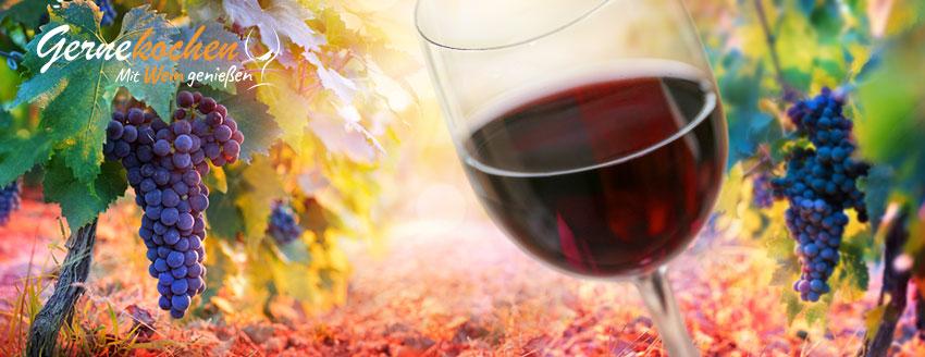 Weinkörper leicht, mittelkräftig und kräftig