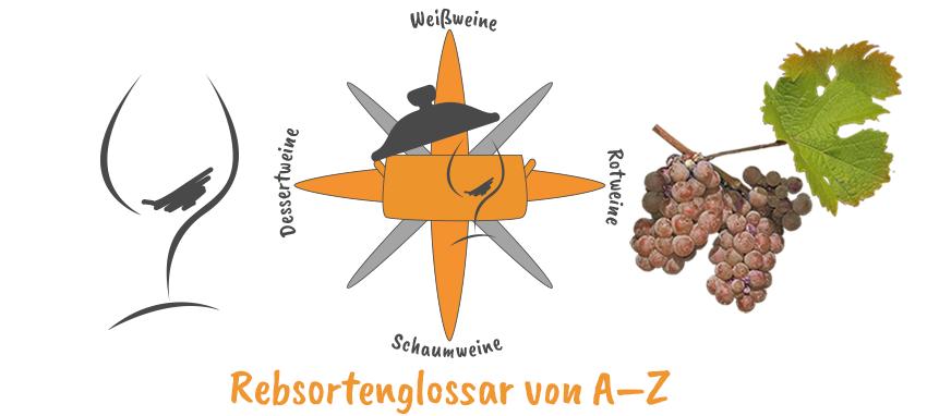 Gernekochen-WEINKOMPASS
