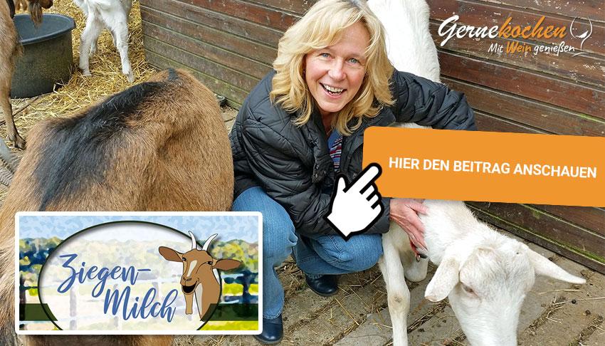 Zu Besuch auf Sonjas Ziegenfarm