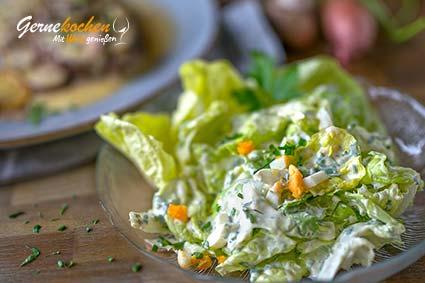 Kopfsalat Klara bzw. Grüner Salat Klara